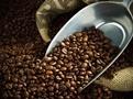 Inkoop bij coöperaties over de hele coffeebelt